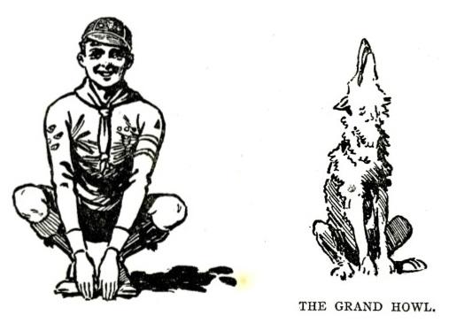 Wolf Cub; Grand Howl; Wolf Cub Handbook;